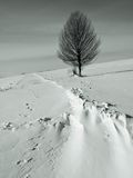 Drifted snow across highway Royalty Free Stock Photos