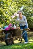 Driftig skottkärra för hög kvinna i trädgård Royaltyfria Bilder