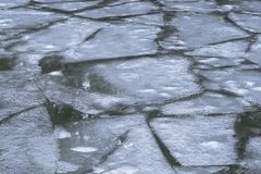 Drifting floes float on the water. Breaking of ice on the ri royalty free stock photo