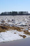 Drifting ice in the spring Stock Photography