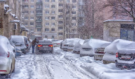 Drifts along a road in winter Stock Photography