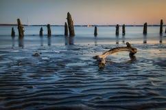 Driftwood και φράγματα άμμου σε εκβολή ποταμού Στοκ Εικόνες