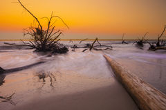 Driftwood στην ωκεάνια, μακροχρόνια έκθεση στοκ εικόνες με δικαίωμα ελεύθερης χρήσης