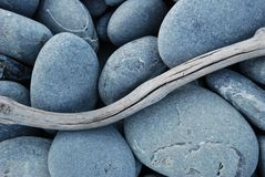 driftwood χαλίκια Στοκ Εικόνες