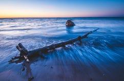 Driftwood на пляже на заходе солнца стоковое изображение