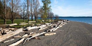 Driftwood на пляже пункта каяка на заходе солнца Стоковое Фото