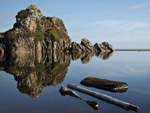 Driftwood плавая в tidepool Стоковое Изображение RF