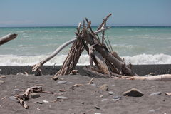 driftwood Photographie stock