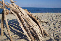 driftwood Imagens de Stock Royalty Free
