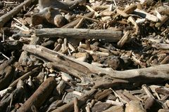 Driftwood Royalty Free Stock Photos