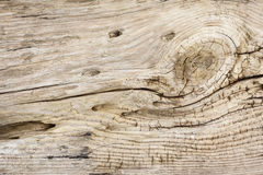 Driftwood Background Texture. Background texture close-up of sun-bleached driftwood Royalty Free Stock Photos