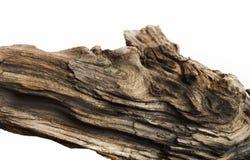 Free Driftwood Bark Close Up Isolated On White Stock Image - 128106741