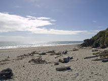 Driftwood on a beach. Driftwood on a desolate beach, Ships Creek New Zealand Royalty Free Stock Images