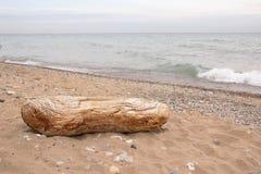 Driftwood on beach, Lake Michigan Stock Photo