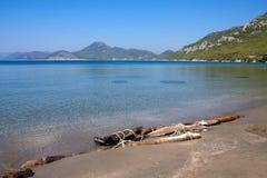 Driftwood on the beach near Dubrovnik, Croatia Stock Photos