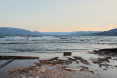 Driftwood on beach with sunset over mountains background Royalty Free Stock Photo