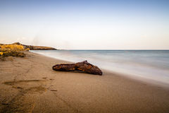 Driftwood on a beautiful beach. At sunset time in Sicily The water is ethereal for the long exposure stock photo