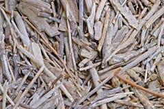 driftwood blandade ihop sticks royaltyfri bild