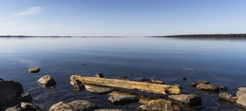 Driftwood. At calm sunny day stock images