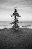 Driftwood Christmas Tree, Pouaua Beach, Gisborne, New Zealand. Vertical portrait  format black and white photograph of driftwood Christmas Tree made by Royalty Free Stock Photo