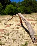 Driftwood deserted near Oak Creek, Sedona Arizona. An art form and found-object that is at once organic, random, a tree branch, a relic, or a remain. It is dry Royalty Free Stock Photography