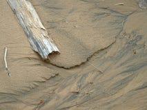 Driftwood en la arena Foto de archivo libre de regalías