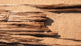 Driftwood enterrado en la arena Fotografía de archivo libre de regalías