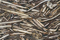 Driftwood floating Royalty Free Stock Images