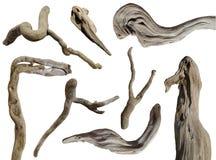 Free Driftwood Isolated Stock Photo - 55464950