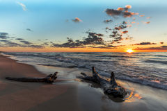Driftwood on a Lake Huron Beach at Sunset Royalty Free Stock Photography