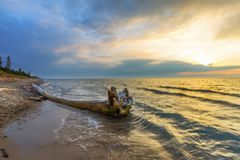 Driftwood on a Lake Huron Beach at Sunset Royalty Free Stock Image