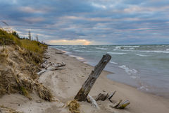 Driftwood on a Lake Huron Beach Under a Cloudy Sky Stock Photography