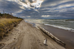 Driftwood on a Lake Huron Beach Under a Cloudy Sky Royalty Free Stock Photos