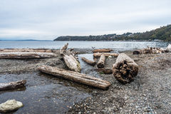 Driftwood Landscape 2. Piles of driftwood line the shore at Seahurst Beach Park in Burien, Washington royalty free stock photography