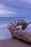 Driftwood long exposure. Long exposure shot of a driftwood in South Corfu Greece Royalty Free Stock Photo
