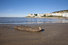 Driftwood, Marine lake,Weston Super Mare Stock Image