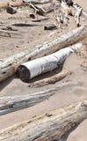 Driftwood na piaskowatej plaży zdjęcie stock