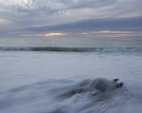 Driftwood, ondas e susnet Imagens de Stock Royalty Free