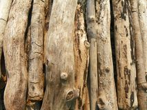 Driftwood piled on lake shoreline. Weathered driftwood washed ashore and gathered from the shoreline. Smooth without bark, shades of tan and brown sticks layed Royalty Free Stock Photos