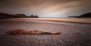 Driftwood przy Trzy falez zatoką Obrazy Royalty Free