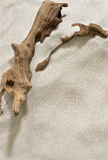 Driftwood and Sand Background. Driftwood partially buried in the sand royalty free stock image