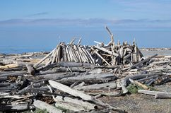 Driftwood Shelter On South Beach stock photography