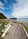 Driftwood on the shore of Shine Tidelands State Park on Bywater Bay near Port Ludlow in the Puget Sound in Washington State. USA Stock Images
