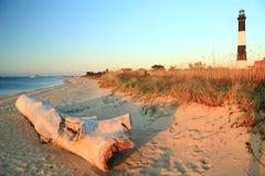Driftwood sul suono del Long Island immagini stock