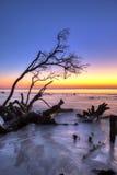 Driftwood and sunrise hdr Stock Image