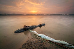 Driftwood with sunrise. A stormy lake with driftwood on the shoreline Stock Image