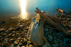 Driftwood Sunset Royalty Free Stock Photo