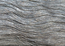 Driftwood texture  background Stock Photo