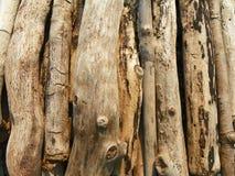 Drijfhout dat voor een strandbrand wordt gestapeld Royalty-vrije Stock Foto