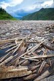 Drijfhout in een rivier Royalty-vrije Stock Afbeelding